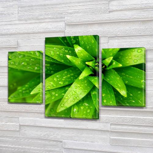 Зеленые лепестки, модульная картина (Цветы) на Холсте, 80х120 см, (55x35-2/80x45)