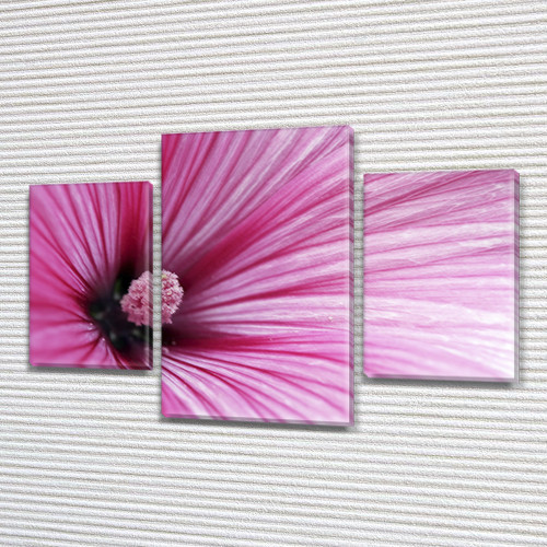 Розовый гибискус, модульная картина (Цветы), 80х120 см, (55x35-2/80x45)
