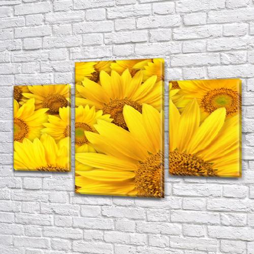 Желтые Подсолнухи, модульная картина (Цветы) на Холсте, 80х120 см, (55x35-2/80x45)