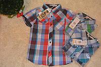 Рубашка   для мальчиков  оптом Glo Story 98-128  см