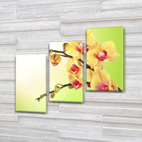 Орхидеи на ветке, модульная картина (Цветы) на Холсте, 100х110 см, (70x35-3)