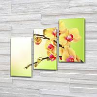 Орхидеи на ветке, модульная картина (Цветы) на Холсте, 100х110 см, (70x35-3), фото 1