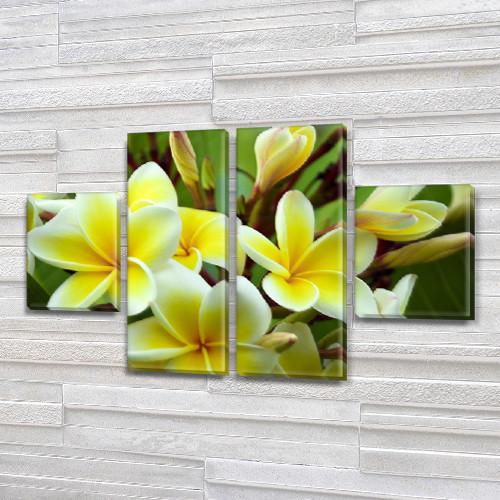 Гавайские цветы Модульная картина на холсте (Цветы), 80x130 см, (40x30-2/80х30-2)