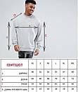 Свитшот, кофта, реглан Calvin Klein C104 , світшот чоловічий кельвин кляйн, фото 2