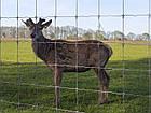 Сетка заграда фермер 200/17/15, фото 2