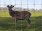 Сетка заграда фермер 200/25/15, фото 2