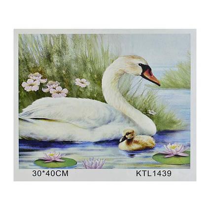 Картина по номерам KTL 1439 (30) в коробке 40х30