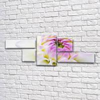 Нераскрывшийся белый цветок, модульная картина (Цветы) на Холсте, 80x190 см, (25x70-2/35х35-2/80x45), фото 1