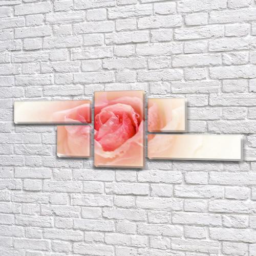 Нежный Розовый Бутон, модульная картина (Цветы, розы) на Холсте, 80x190 см, (25x70-2/35х35-2/80x45)