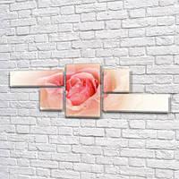 Нежный Розовый Бутон, модульная картина (Цветы, розы) на Холсте, 80x190 см, (25x70-2/35х35-2/80x45), фото 1