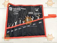 Набор ключей рожковых двухсторонних 6-22мм 8 предметов (пр-во ДК Украина)