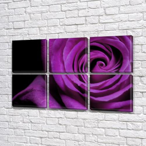 Фиолетовая Роза, модульная картина (Цветы) на Холсте, 72x110 см, (35x35-6)