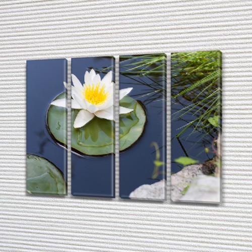 Цветок Лотоса на воде, модульная картина (Цветы) на Холсте, 90x110 см, (90x25-4)