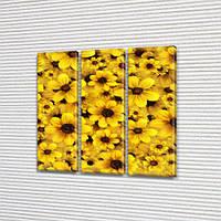 Желтые цветы, модульная картина на Холсте, 95x95 см, (95x30-3), фото 1