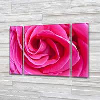 Бутон Розовой Розы, модульная картина (Цветы) на Холсте, 95x135 см, (95x24-2/95х80), фото 1