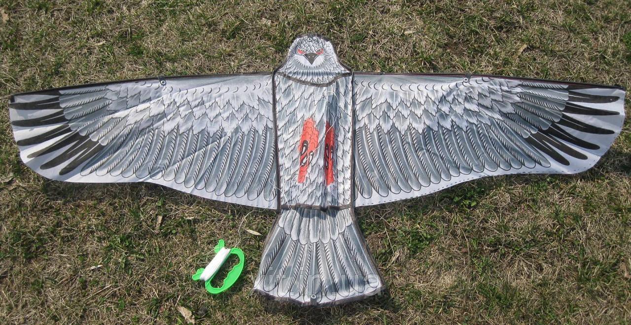 Воздушный змей Ястреб