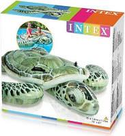 Плотик надувной Intex 57555 Черепаха