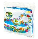 Бассейн надувной детский Intex 59469 с кругом и мячом, бассейны для детей, Интекс, фото 2
