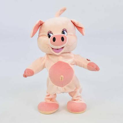 Свинка музыкальная С 30414 (36) 2 вида, высота 30см, танцует, поёт 2 песенки на русском языке, в кульке