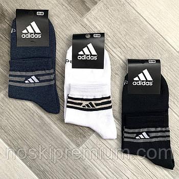Шкарпетки чоловічі демісезонні х/б спортивні Adidas, Athletic Sports, середні, асорті, 12546