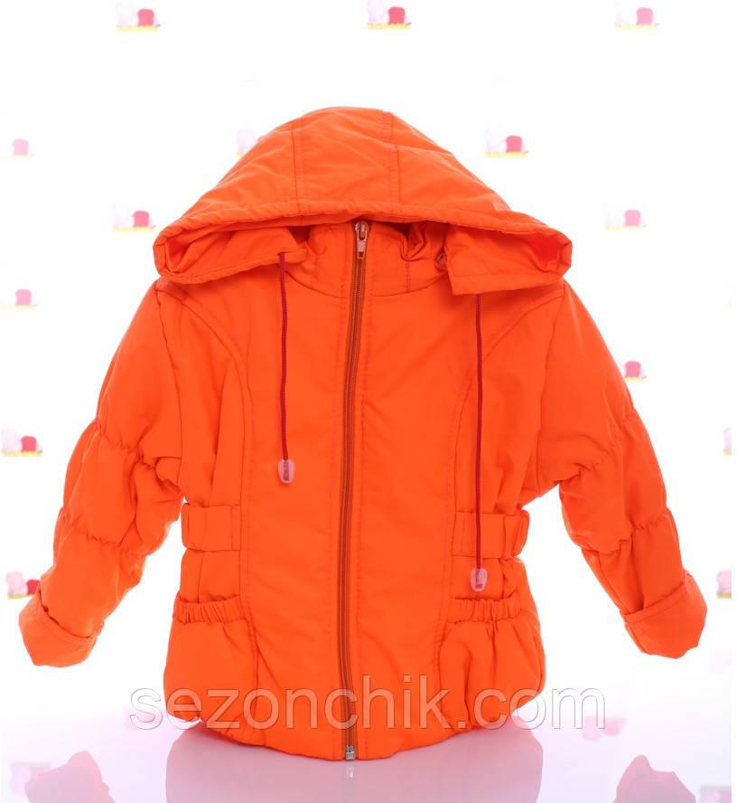 Яркие демисезонные детские куртки на девочек