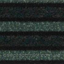 Грязезащитные покрытия Coral, фото 3