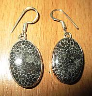 """Яркие серебряные серьги  с натуральным черным кораллом """"Ягуар""""  от студии LadyStyle.Biz, фото 1"""