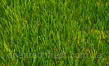 Искусственная спортивная трава для тенниса NewGrass T6-ITF 1, фото 2