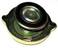 Пробка радиатора (большая), 130-1304010 (А21.01.270)