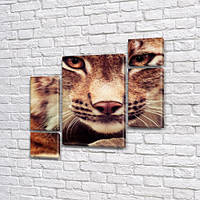 Рысь, модульная картина (животные, коты), на ПВХ ткани, 85x85 см, (40x20-2/18х20-2/65x40), фото 1