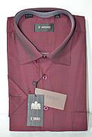 БОРДОВА сорочка з коротким рукавом ENRICO (розміри M. L. XL.XXL) AQUA
