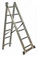 Лестница универсальная Кентавр 2х10