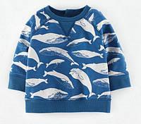 Кофты, регланы и свитера для мальчиков
