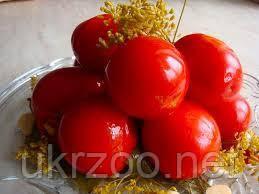 Маринованные помидоры 150г