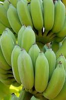 Мука зеленого банана  1кг/упаковка
