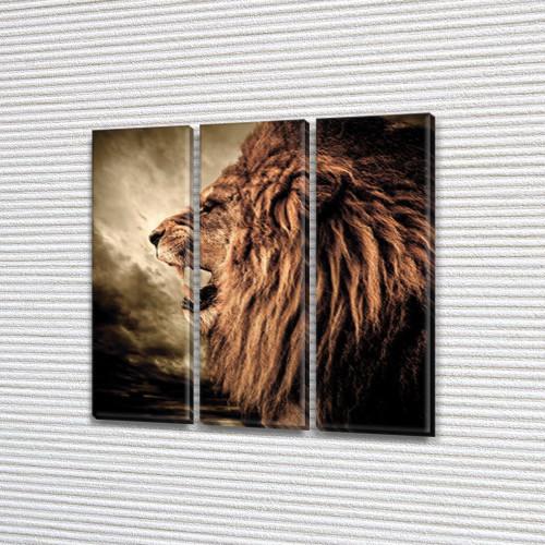 Грозный Лев, модульная картина (животные, львы, коты), на Холсте син., 65x65 см, (65x20-3)
