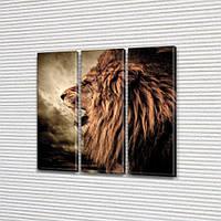 Грозный Лев, модульная картина (животные, львы, коты), на Холсте син., 65x65 см, (65x20-3), фото 1