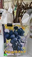 Саженец винограда  Ришелье