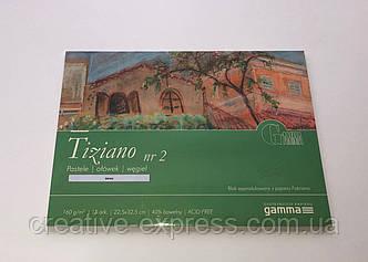 Альбом для пастели GAMMA Tiziano 160 15л (2) T160223202