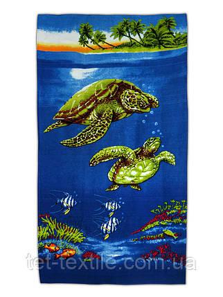 """Пляжное полотенце """"Черепахи"""" 70х140см., фото 2"""
