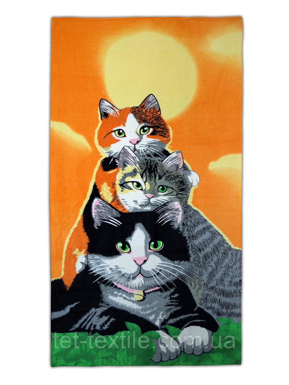 """Пляжное полотенце """"Коты"""" 70х140см."""
