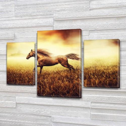 Винтажный конь в поле, модульная картина (животные,кони, лошади) на Холсте, 80х120 см, (55x35-2/80x45)