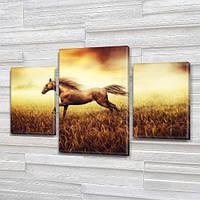 Винтажный конь в поле, модульная картина (животные,кони, лошади) на Холсте, 80х120 см, (55x35-2/80x45), фото 1