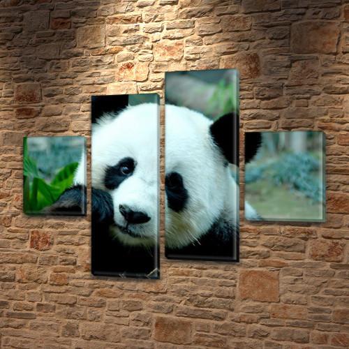 Панда, модульная картина (животные, медведи) на ПВХ ткани, 85x110 см, (35x25-2/75х25-2)