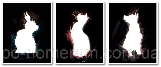 Раскраски по цифрам Триптих животные в черно-белом стиле