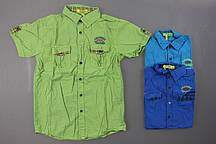 Рубашка для мальчиков S&D, 134-164 рр.