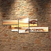 Зебры, модульная картина (животные, Африка), 80x190 см, (25x70-2/35х35-2/80x45), фото 1