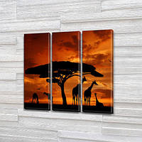 Жирафы на закате, модульная картина (животные, Африка), 95x95 см, (95x30-3), фото 1