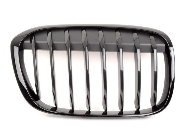 Оригинальная передняя левая решетка радиатора BMW M Performance F48 X1, Black