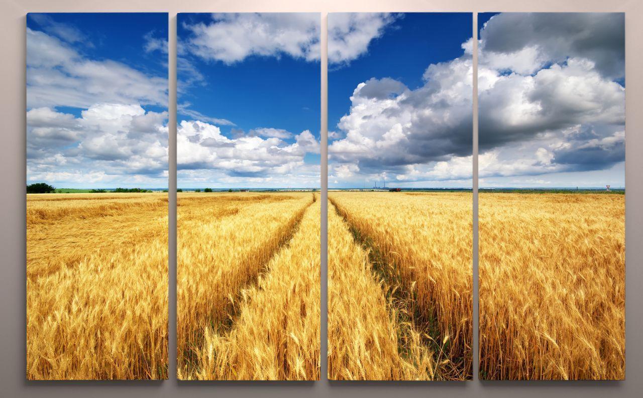 Модульная картина украинское поле 120х60